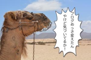 【リンク豊富】アパレルバイヤーNAOYAのBuyer'sブログ更新のお知らせ